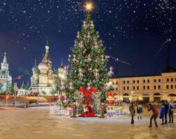 novogodnie-i-rozhdestvenskie-yarmarki-v-moskve-v-2019-godu-5
